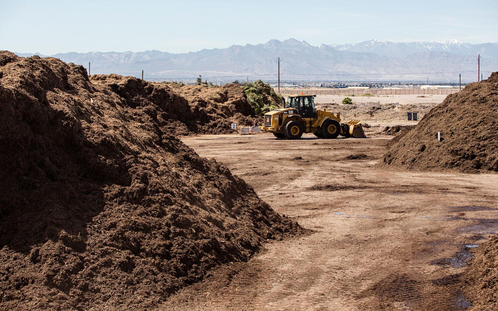 Terra Firma Nevada